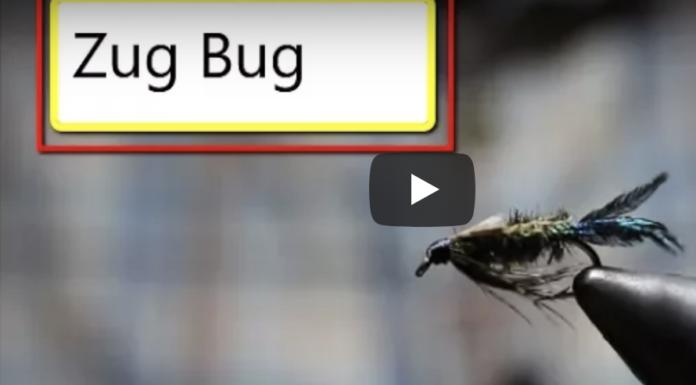 zug bug