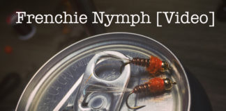 frenchie nymph