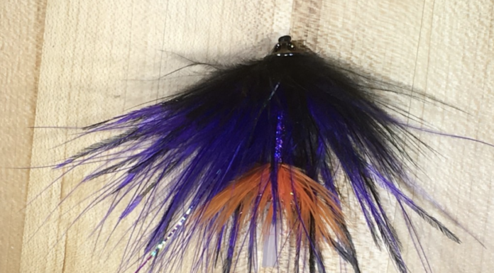 best winter steelhead fly colors