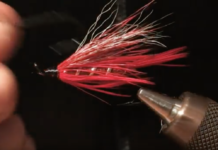 summer crush steelhead fly