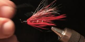 summer crush steelhead fly