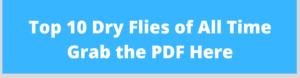 dry fly fishing pdf