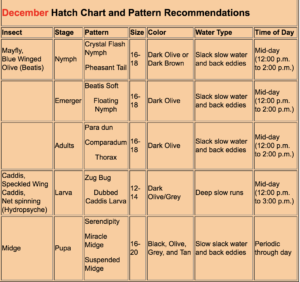 hatch guide