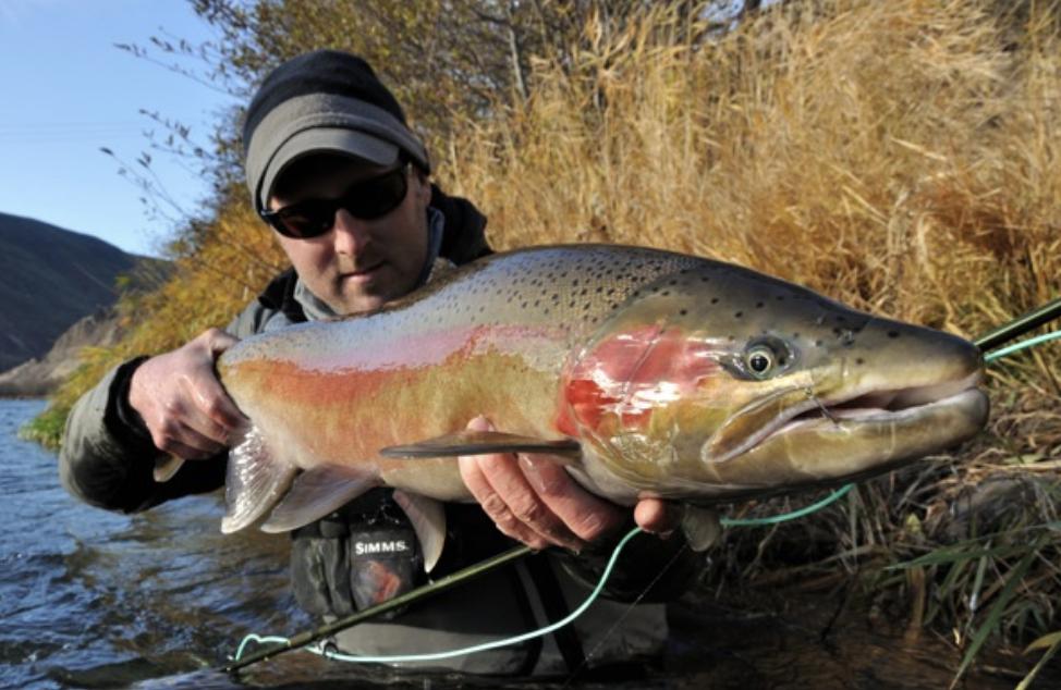 Wfs 011 tom larimer interview summer steelhead fly for Steelhead fishing tips