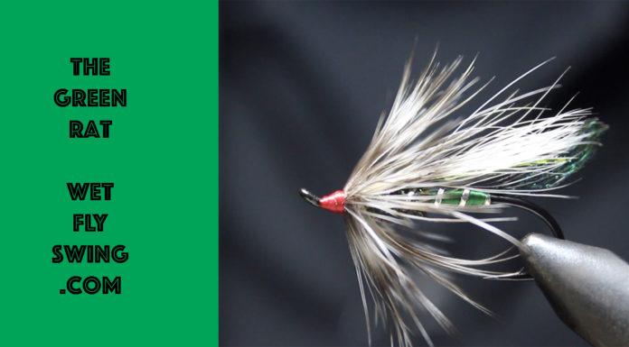green rat
