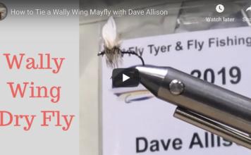 wally wing
