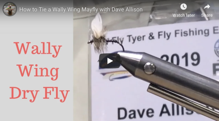 wally wing