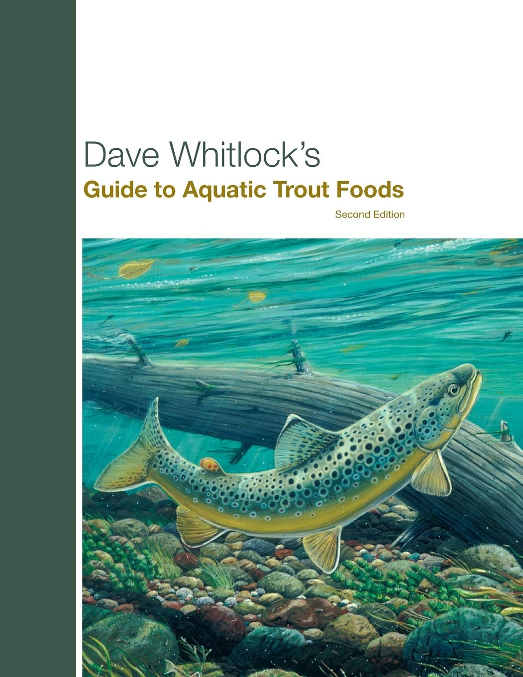 guide to aquatic trout foods