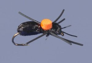bright spot ant