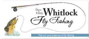 dave whitlock