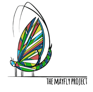 mayfly project