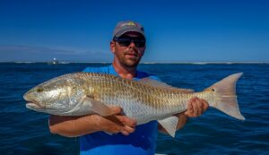 fly fishing for redfish