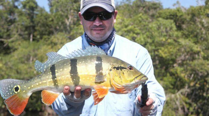fly fishing ecuador